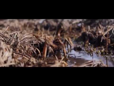 Aphex Twin - Flim (slow) Timelapse