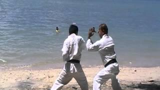 Master Deo Bascon and Master Ed Villarin ( Martial Arts Techniques)