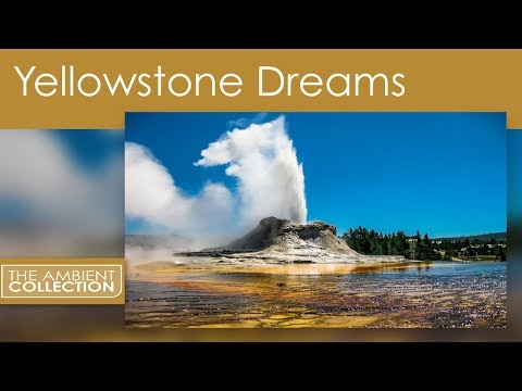 Nature DVD - The Flow of Nature with Scenery From Yellow Stone National Park