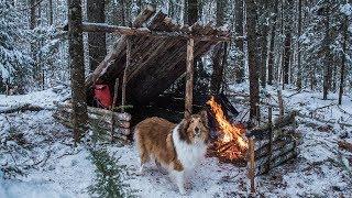 2 Night Winter Bushcraft Camp With My Dog