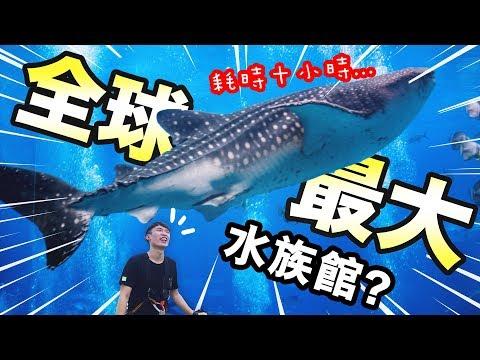【全世界最大水族館】完成!耗時十小時?「過百種奇怪水底生物」令你大開眼界…:Megaquarium#4END