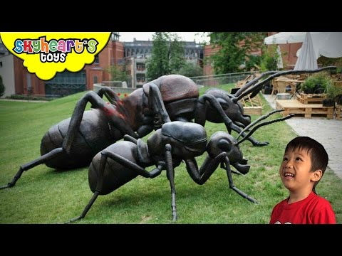 Toddler hunts for GIANT INSECTS - Ant, Bee, Scorpion, Cockroach, Spider, Playtime Kids toys