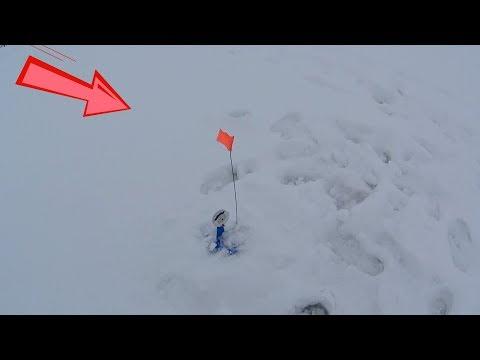 Вот он, загар! Ловля щуки на жерлицы зимой. Ловля плотвы на безмотылку. Зимняя рыбалка 2018.