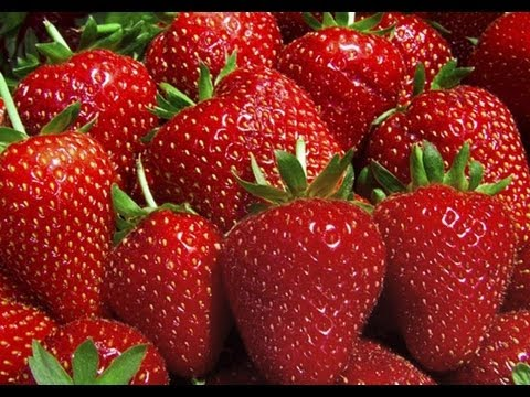 Strawberries Store Freeze How to Freeze Strawberries