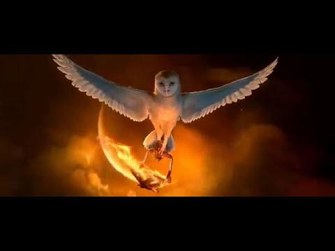 Le Royaume de Ga'Hoole - Vol dans le feu de Seren