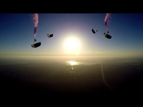 PD Factory Team: Dynamic Canopy Flight