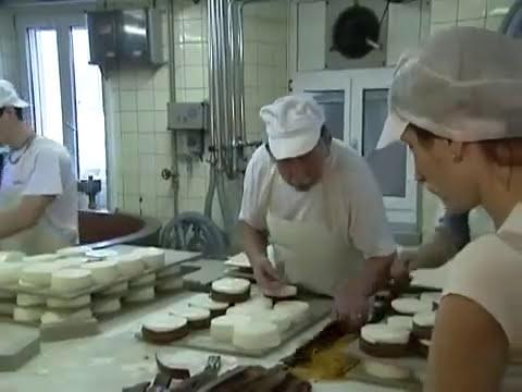 O dia a dia de uma família de produtores de leite