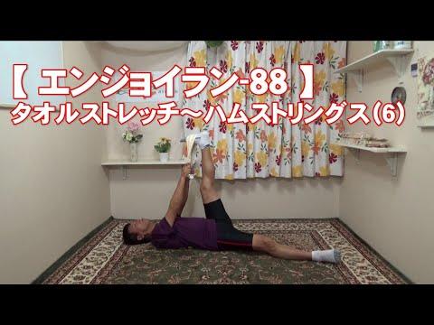 #88 ハムストリングス(6)/筋肉痛改善ストレッチ・身体ケア【エンジョイラン】