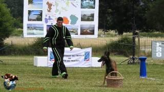 2015 - Championnat Ring Dom-Tom Domérat - Hannibal du Domaine des Eclaireurs - Xavier Marie-Joseph