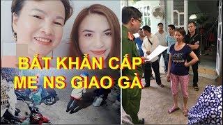 Khám xét, bắt khẩn cấp mẹ nữ sinh giao gà bị sát hại ở Điện Biên