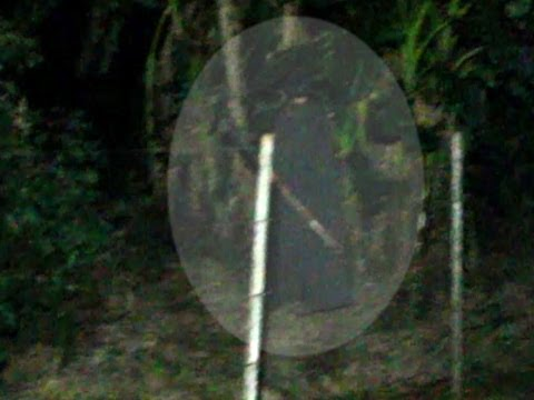 Aparição de fantasma do homem da capa preta em SP