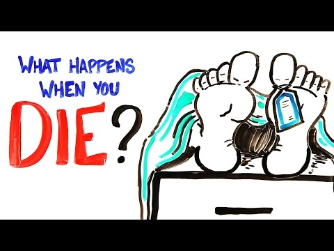 What Happens When You Die?