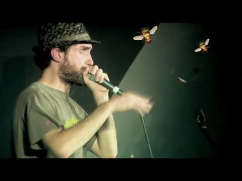 Beardyman - Aphex Twin Attacked by Bumble Bees