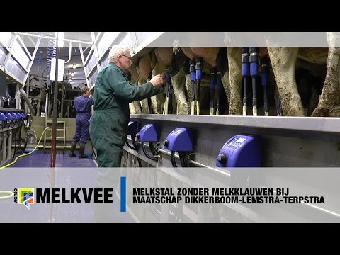Melkstal zonder melkklauwen bij maatschap Dikkerboom-Lemstra-Terpstra - www.melkvee.nl