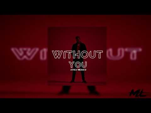 Avicci Without You Free MP3 Songs Download