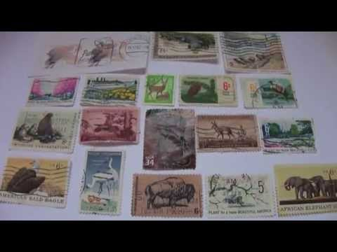 Wildlife & Old Stamps For Beauty Botanical Congress International