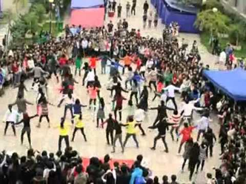 Tlu Flash Mob (fix Audio) video