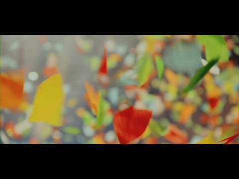 BUMP OF CHICKEN��You were here��Music Video