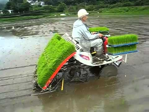 Bao giờ Việt Nam mình mới có Máy Cấy Lúa như thế này nhỉ