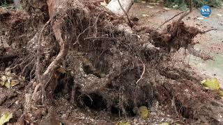 Aşırı Yağış ve Fırtına Mersin'i Vurdu