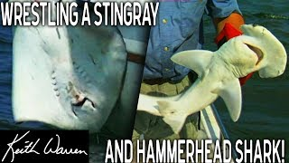 Fishing for a GIANT STINGRAY and a HAMMERHEAD SHARK