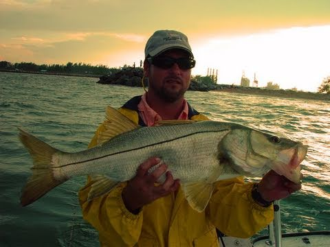 Inshore Snook Fishing Fort Lauderdale Dave McKenzie
