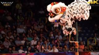 第1名 中國深圳松崗比麟堂醒獅團 陸上(4K 2160p)@2015高雄水陸戲獅甲[無限HD] 🏆