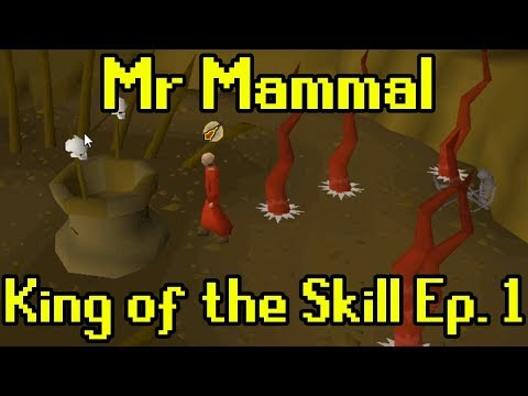 Oldschool Runescape - King of The Skill Adventure (Ep. 1/2)
