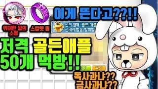 메이플 스칼렛링 저격 골든애플 50개 먹방!!! 떠..떳냐??!!!!
