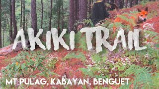 Conquering the Akiki Trail of Mount Pulag | Travel Vlog