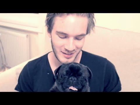 Ma New Doge video