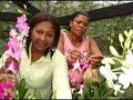 Video Amparo Ochoa - Amparo Ochoa - Mujer  de Amparo Ochoa