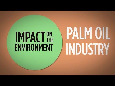 Palm Oil - Environment & Deforestation