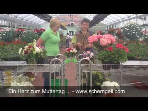 Scherngell Gärtnereitipp: Schenk Ein Herz Zum Muttertag 2013