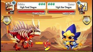 Dragon City - Random Fight + Exclusive Battles   Part 369 [Full Combat & Skills]