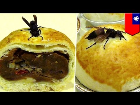 Weird Asian food: Hornet mooncake filled with larvae available at Taiwan's Mid-Autumn Festival