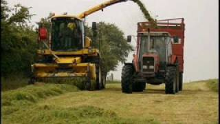 Silage 2010
