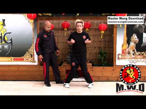 wing chun basic lesson 1 Image 1