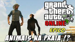 GTA 5 Online - Easteregg Vice City, Cerca bugada e Animais na praia ÉPICO
