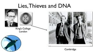 Lies, Thieves and DNA