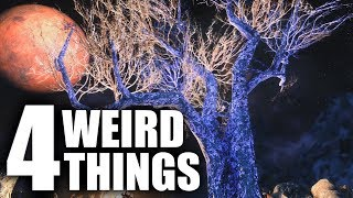4 WEIRD Things YOU PROBABLY Don't Know! - Elder Scrolls Lore