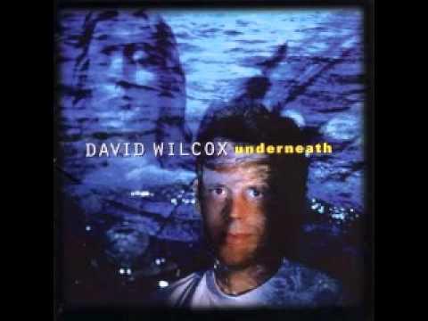 David Wilcox - Prisoner of War