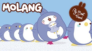 Molang Back to School Compilation