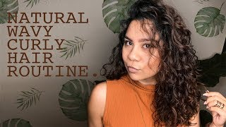 My Natural Wavy Curly Hair Routine | Type 2 Hair | Low Maintenance