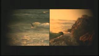 Ryuichi Sakamoto : Amore