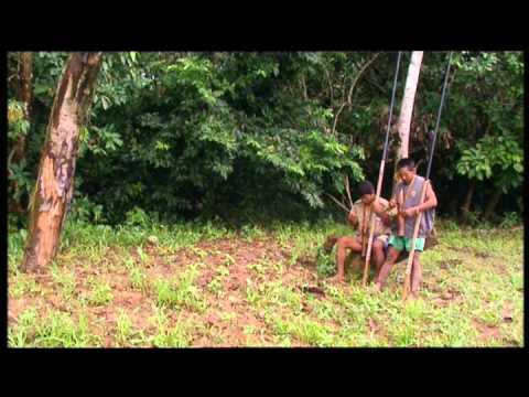 Amazonia, última llamada. Capítulo III. La voz de la selva