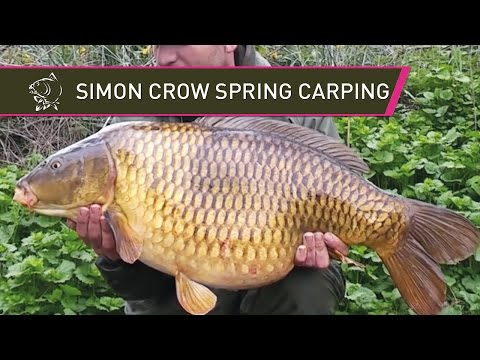 Simon Crow's Spring Syndicate Blog