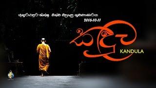 Kandula in Anuradhapura Bhikshu University  Auditorium 2016-10-11
