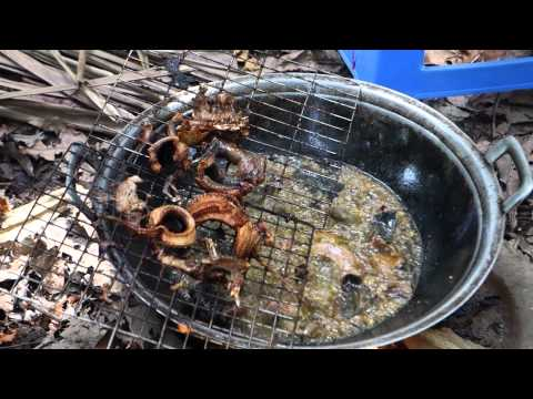 Eating Nature in Vietnam 2014 - Snakes, Cranes, and Rats.