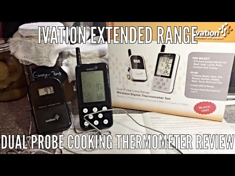 Ivation Extended Range Dual Probe Cooking Thermometer Review